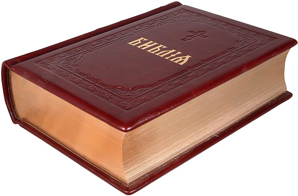 Скачать Бесплатно Через Торрент Библию - фото 8