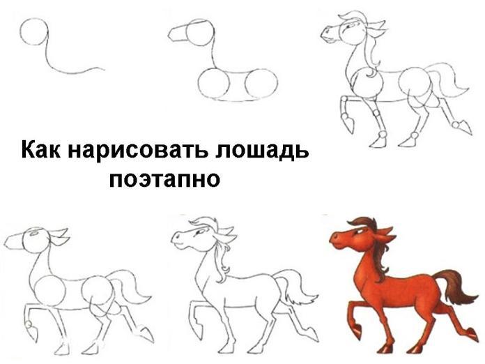 Как рисовать лошадь поэтапно для 2класса